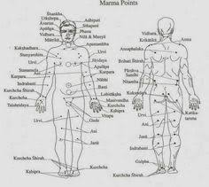 Marma Chart Image Result For Marma Points Chart Acupressure Ayurveda