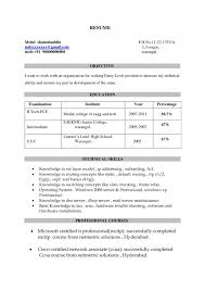 Resume Title Examples For Fresher Engineer Resume Template Example