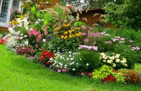 Small Picture Landscape Design Nice Front Yard Landscaping Ideas Florida South