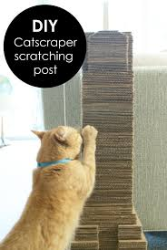 catser diy cat scratching post scratcher made from recycled cardboard