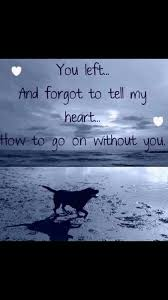 Dog Death Quotes 21 Best 24 Best Inspirational Dog Death Quotes Pinterest Images Animal