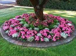 Circular Shade-Loving Annuals Flower Bed
