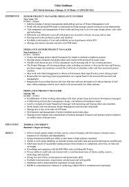 Freelance Project Manager Resume Samples Velvet Jobs
