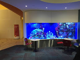 boston children s hospital interview questions glassdoor boston children 039 s hospital photo of i love the lobby at the