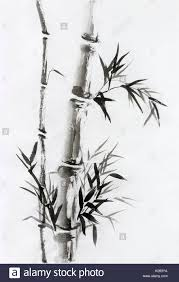 bamboo stalk with leaves anese zen painting sumi e oriental black ink on rice paper ilration fine artwork