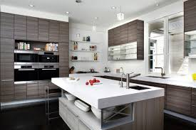 indian modern kitchen images. best kitchen design websites surprising modern room and with indian ideas images e