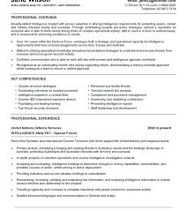 It Resume Objective Tongue And Quill Resume Template It Resume