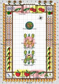 companion vegetable garden layout the
