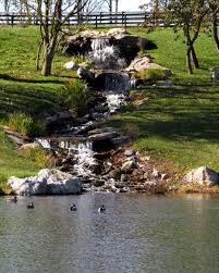 Small Picture Best 25 Building a pond ideas on Pinterest Koi ponds Diy pond