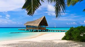 beach paradise wallpaper summer hd