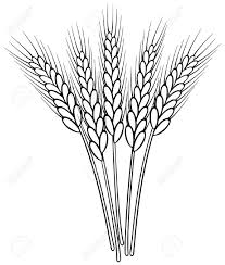 Small Wheat Sheaf Vector Google Search