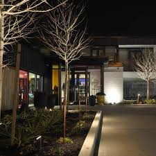 custom landscape lighting ideas. Full Size Of Lighting:residential Landscape Lighting Options Formidable Outdoor Picture Design Perspectives Ideas For Custom