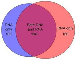 Compare Dna And Rna Venn Diagram Studying Bacteria In Respiratory Specimens By Using