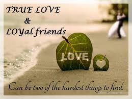 Love And Friendship Quotes Simple True Love Loyal Friends