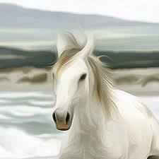 homeanimals a herd of white horses canvas large art