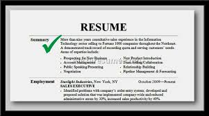 resume professional summary examples sales resume template ...