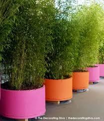 outdoor garden planters. Garden Design With Hot Pink Uamp Bright Orange Planters Decorating Diva Edible Outdoor