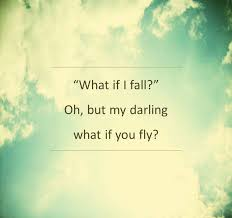 Flying Quotes And Sayings With Pictures ANNPortal Adorable Flying Quotes