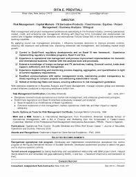 Big Four Resume Sample Operations Manager Resume Sample Fresh Excellent Credit Risk Resume 31