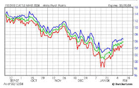Feeder Cattle Index Chart Beef Industry Charts