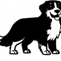 Malvorlage Berner Sennenhund Malvorlagencr