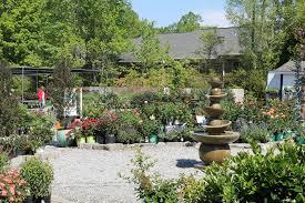 new garden landscaping nursery 16 photos nurseries gardening 3811 lawndale dr greensboro nc phone number yelp