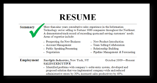 Resumes Resume Summary Example How To Write Oneswordnet Allowed