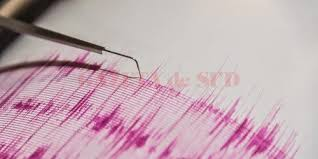 Image result for seismograf
