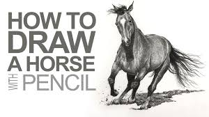 horses drawings in pencil step by step. Brilliant Drawings How To Draw A Horse With Pencil Throughout Horses Drawings In Step By