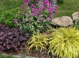 garden designs zone 7. perennials for zone 7 with hakon grass spring garden ideas designs