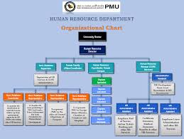Sa Benefits Chart Hr Organizational Chart Human Resources Hr Pmu