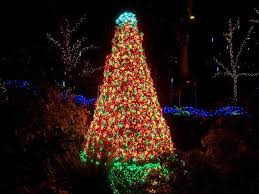 photo essay christmas in the northwest includes first hand account  a christmas tree of lights at the bellevue botanical garden