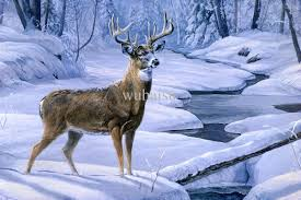 2018 hot ing hd print oil painting on canvas deer in the snow 22x33 from wuhaisu 19 1 dhgate com