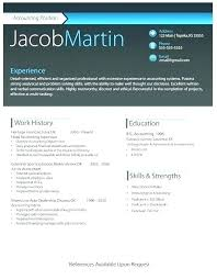 Free Download Resume Templates For Microsoft Word 2010 Free Professional Cv Template Word