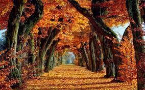 Fall Autumn Desktop Wallpapers - Top ...
