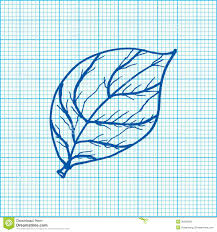 Drawing Of Leaves On Graph Paper Vector Stock Vector