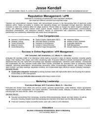 consulting professional resume