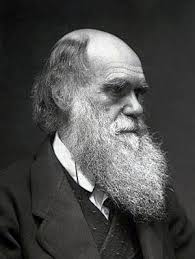 Charles Darwin (1809  1882) was an English Natural scientist who laid down  a framework for the theory of evolution  showing how Man evolved from  lower ...