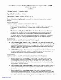Sample Resume For Entry Level Automotive Technician New Mechanic
