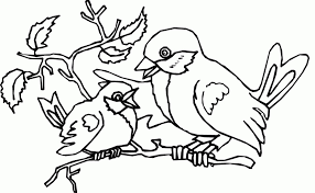 Small Picture Get This Bird Coloring Pages to Print for Kids 95713