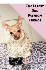 Designer Dog Clothes And Accessories Curly Knit Jumper Dog Accessories Designer Dog Clothes