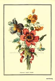 John Henry Floral Design Books Bouquet With Anemones French Botanical Print Jean Baptiste