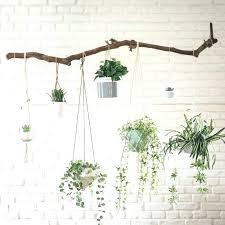 plant wall hangers indoor hanging plant pots indoor hanging basket plastic hanging planters wall hanging plant pots indoor living wall home interior design