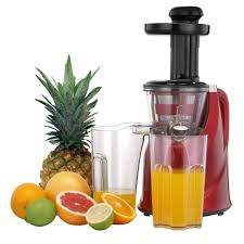 Juice Extractor Comparison Chart Top 10 Best Cold Press Juicer Review 2019 Masticating