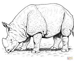 Small Picture Indian Rhino coloring page Free Printable Coloring Pages