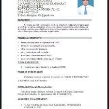 Download Resumes Format Word Resume Formats Download Resume Format In Word Document Resume