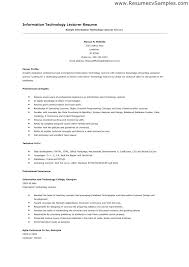 resume format for lecturer in computer science resume format for assistant  professor in engineering for application