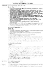 Business Planning Analyst Resume Samples Velvet Jobs