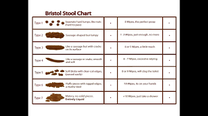 Bristol Stool Chart Meanings