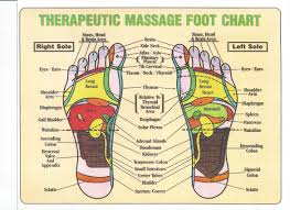 Foot Organ Chart Therapeutic Hand And Foot Massage Chart